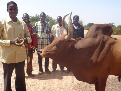 photo of Gneta-Ton Group