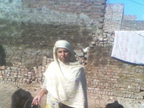 photo of Sughara