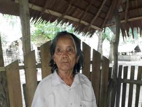 photo of Warlita