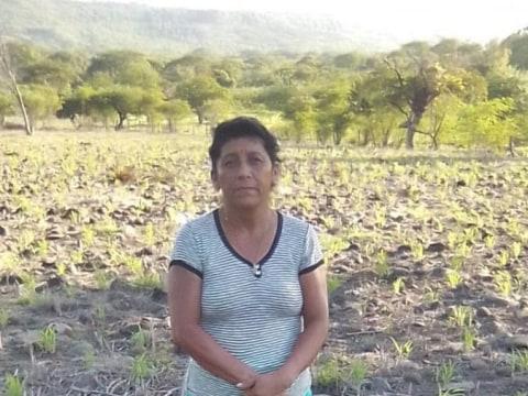 photo of María Isabel