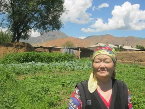 photo of Virabu