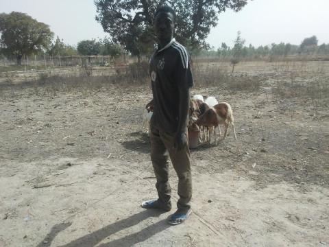 photo of Djebré