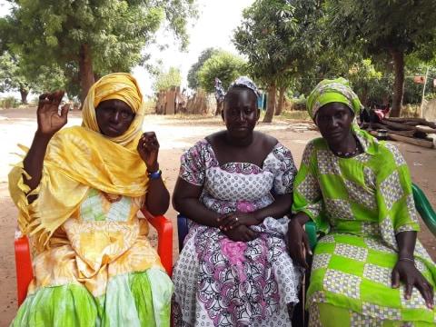 photo of Diénéba's Group