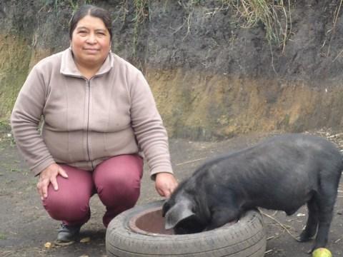 photo of Mirian Del Socorro