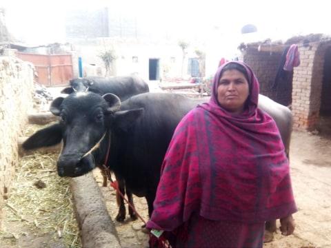 photo of Mukhtiyaran