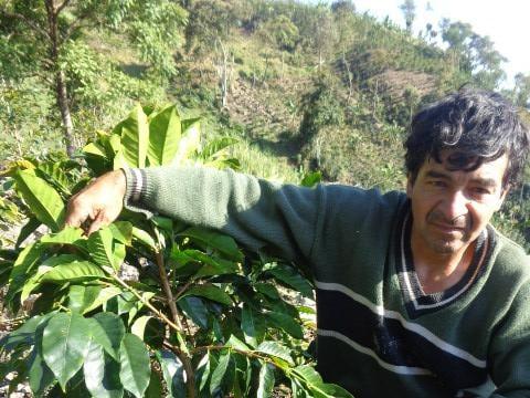 photo of Virgillo