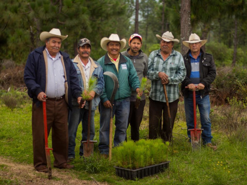 photo of Ecologico Para El Futuro Group