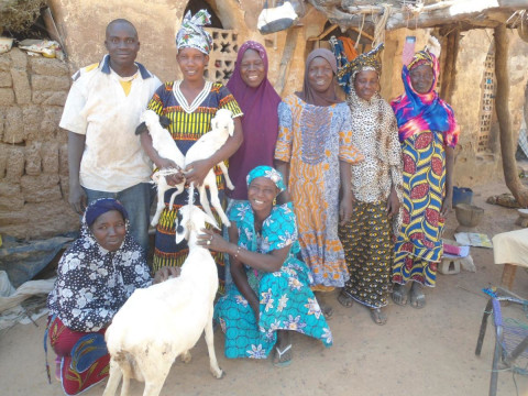 photo of Djiguiya Cco Group