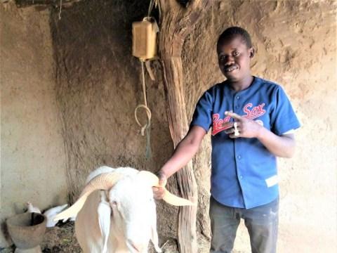 photo of Faso- Kanou Group