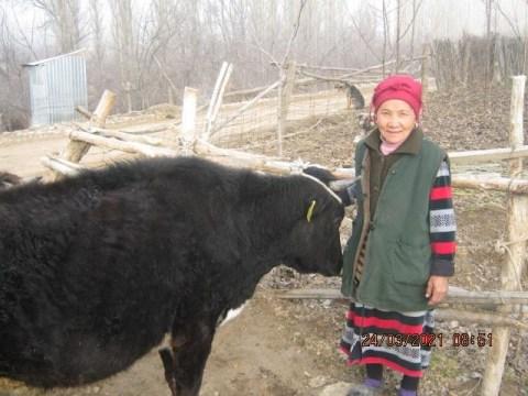 photo of Yryskan