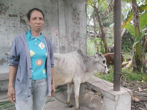 photo of Maximiana