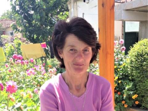 photo of Velika