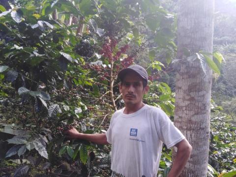 photo of Santos