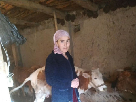 photo of Muhammadi