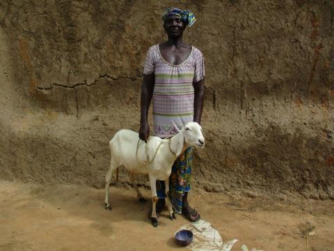 photo of Djiguissèmé Group