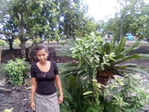 photo of Kalina
