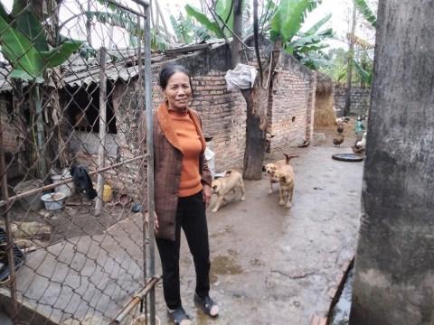 photo of Nhiễu