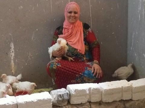 photo of Hayam