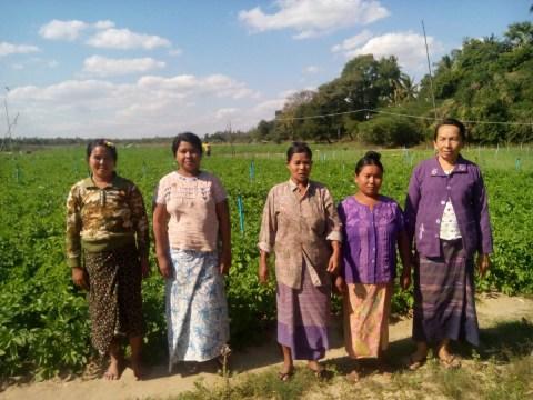 photo of Yae Myet(2)C Village Group