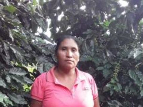 photo of Joaquina