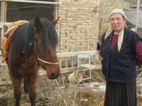 photo of Meilkan