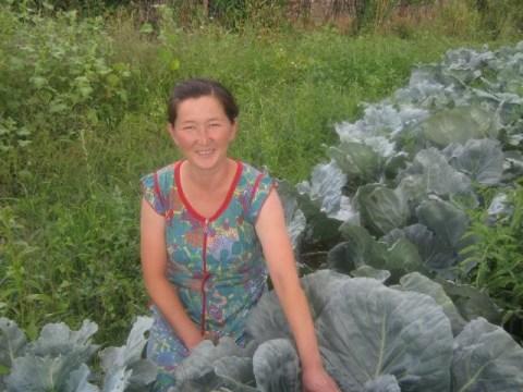 photo of Elmira