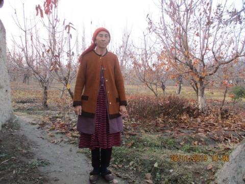 photo of Saidinsa
