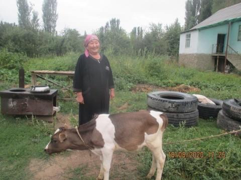 photo of Gulaida