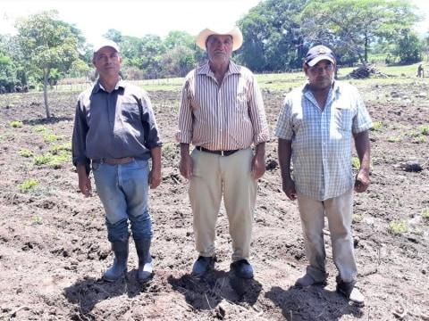 photo of San Antonio De Las Ventanas Group