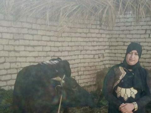 photo of Hala