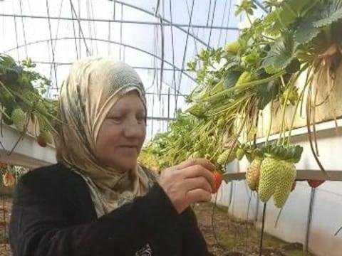 photo of Rawda