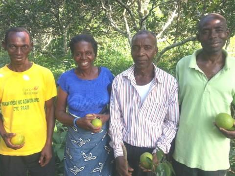 photo of Adom Farms Group