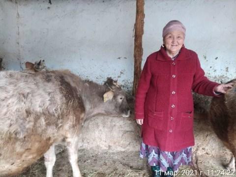 photo of Karamatkan