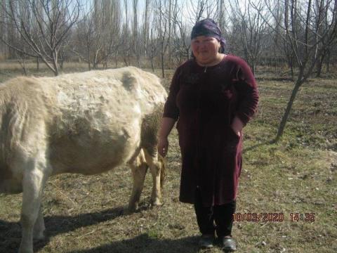 photo of Bubazhar