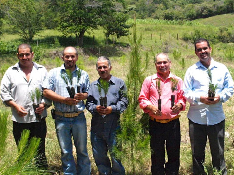 photo of Resineros De Curucupaceo Group