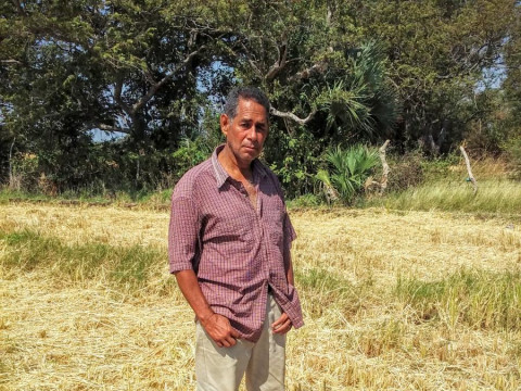 photo of Julio Cesar