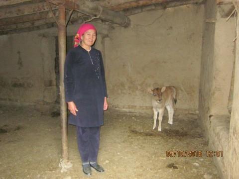 photo of Gulmairam