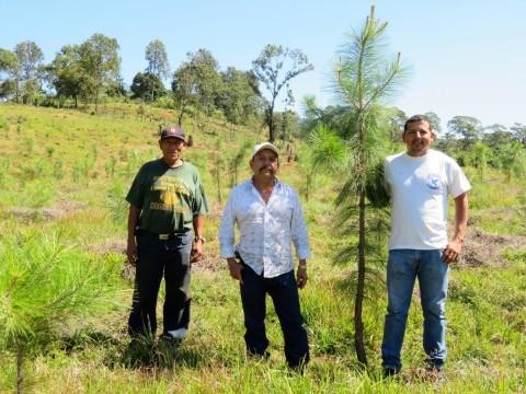 photo of La Cebadilla Group