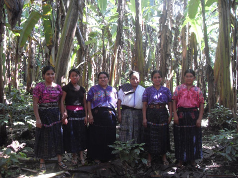 photo of Pajoca 2 Group