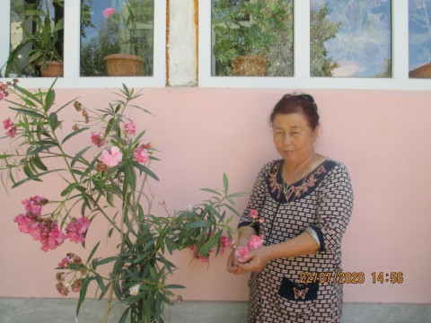 photo of Sonunbu