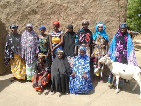 photo of Jamadjigui Group