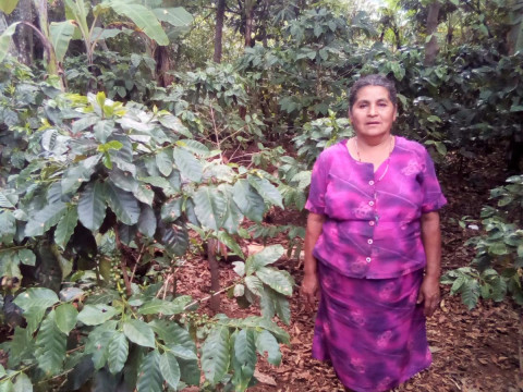 photo of Maria Fulgencia