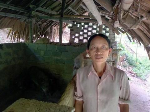 photo of Đào