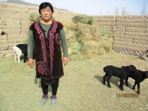 photo of Nazgul