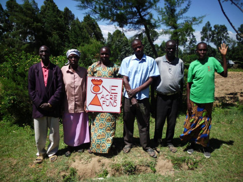 photo of Grace's Group