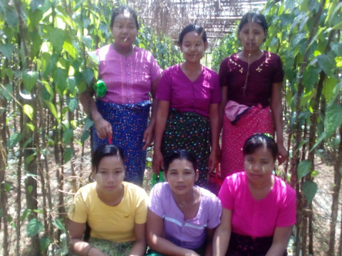 photo of Myint's Group