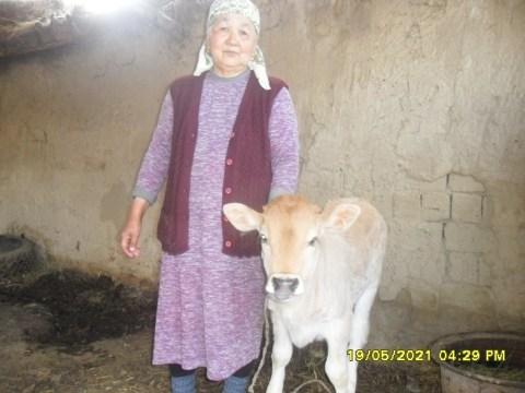 photo of Azimkul