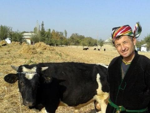 photo of Mahmudjon