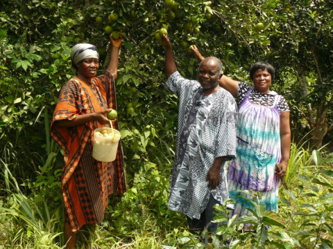 photo of Nyame Ye Group