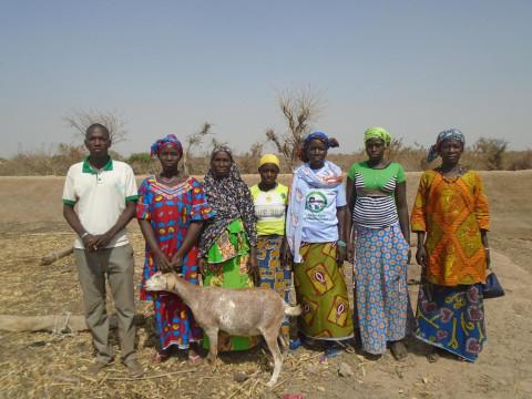 photo of Nyogodeme Group
